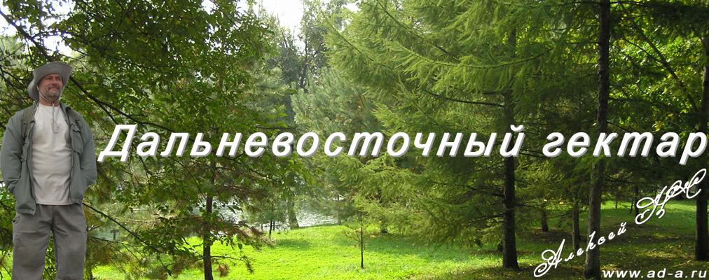 dalnevostochnyiy-gektar